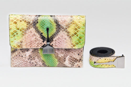 The Limited Edition Python Bag