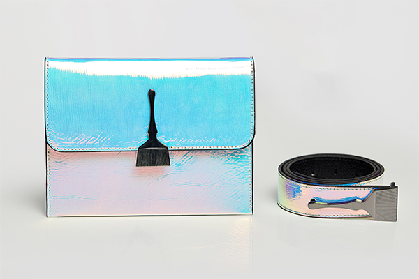 Reflective Brush Bag In Blue & Pink